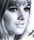 Doctor-Who-Autograph-ANNEKE-WILLS-Polly-Signed-Photo_28229.jpg